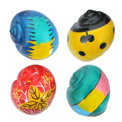 Painted Hermit Crab Shells Wholesale supplies